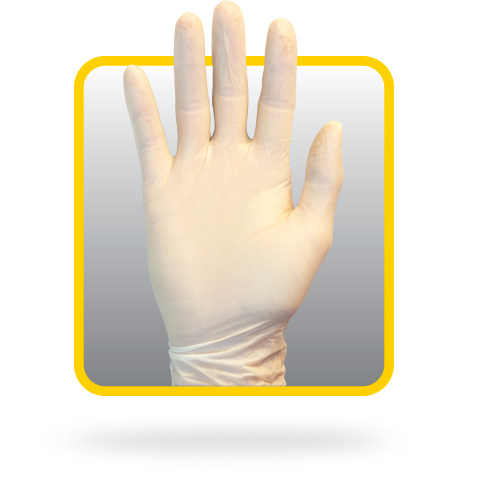 Safety Zone GRPR-LG-1-T Powder Free Disposable Natural Latex Rubber Gloves by The Safety Zone Large Box of 100